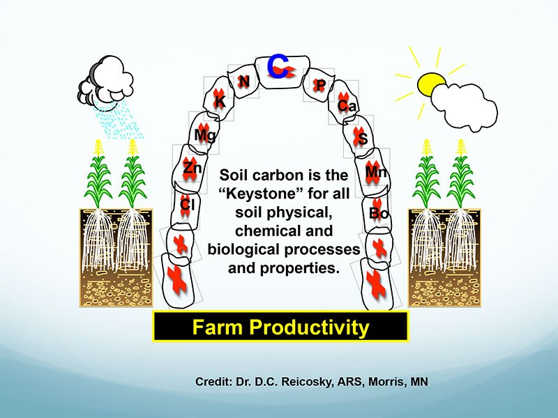 Figure 1. Carbon as the key to agricultural productivity and resilience