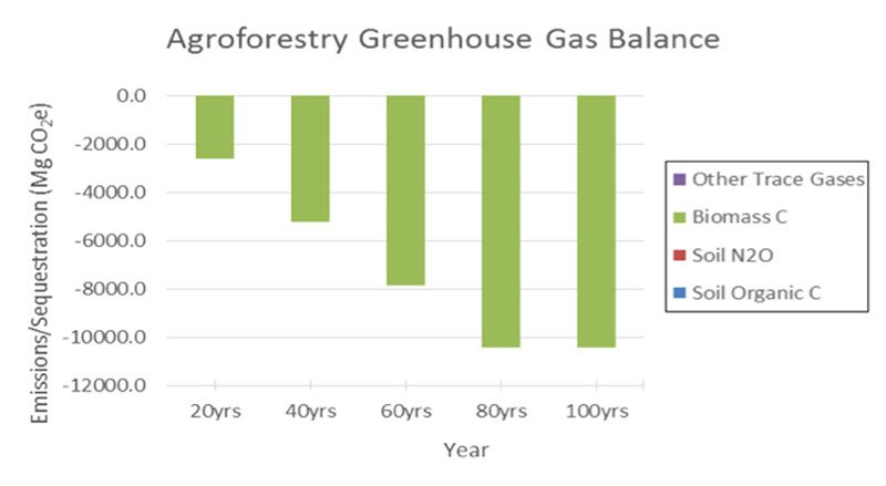 Figure 5. Greenhouse gas balance for agroforestry systems, ABC Ranch.